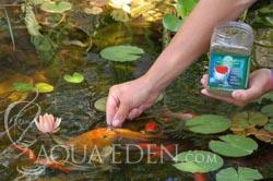Aqua Eden Koi and Goldfish Food