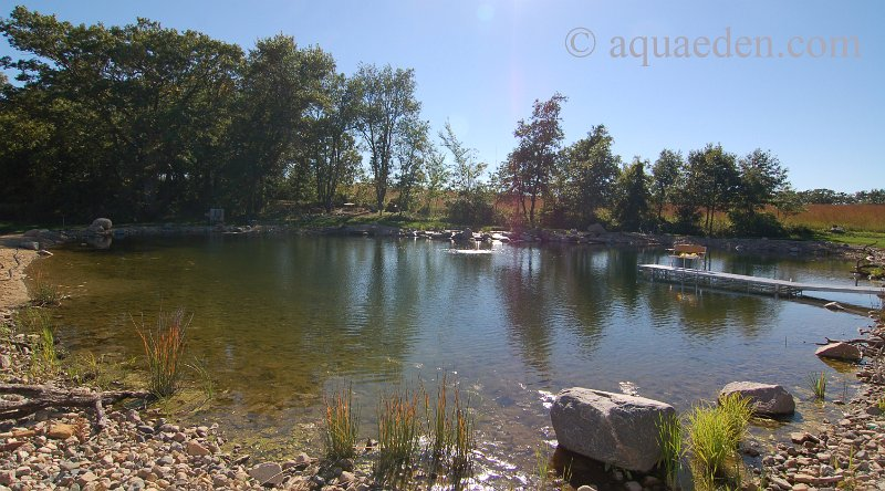 1000 images about pond on pinterest ponds fish ponds for Large pond design ideas