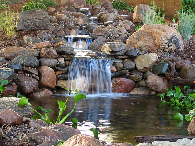 Pond pictures waterfalls backyard koi pond for Koi pond pictures