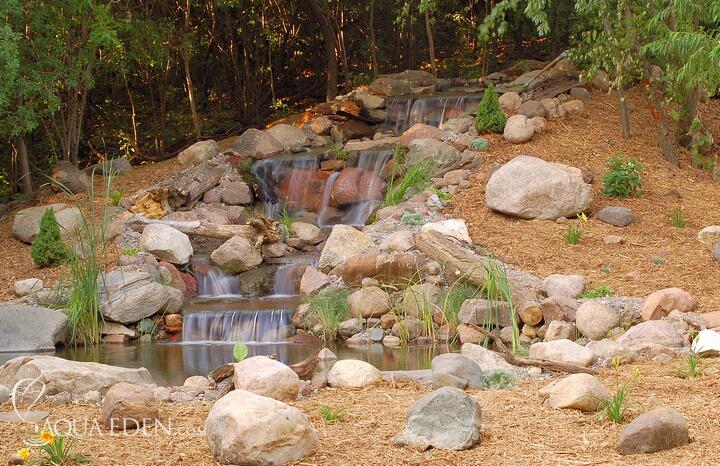 Backyard Koi Pond Photos : Backyard Koi Ponds Related Keywords & Suggestions  Backyard Koi Ponds