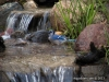 bluejay-twin-waterfalls-faribault