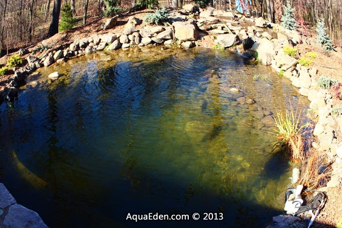 crystal-clear-water-pond