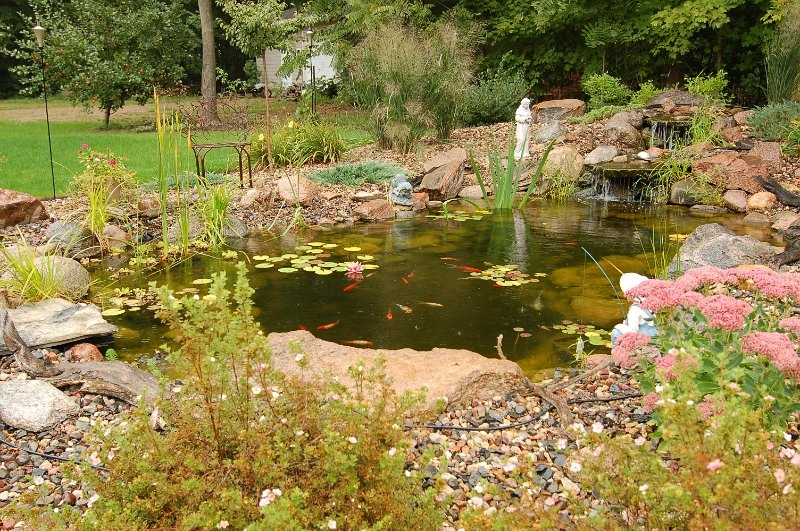 landscape-pond-faribault