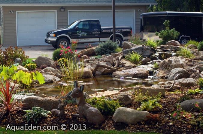 water-garden-pond-plants-minnesota