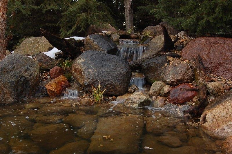 wells-lake-mn-pond