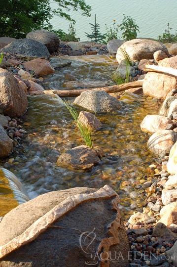 stream-by-french-lake-minnesota