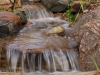 backyard-waterfall-stream-faribo
