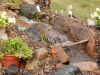 backyard-waterfall-stream-flowers-mn