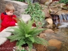 indoor-koi-pond-child-ace-hardware