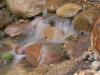 round-rock-waterfall-lakeville-mn