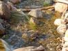 stream-by-french-lake-minnesota